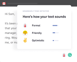 Grammarly review image